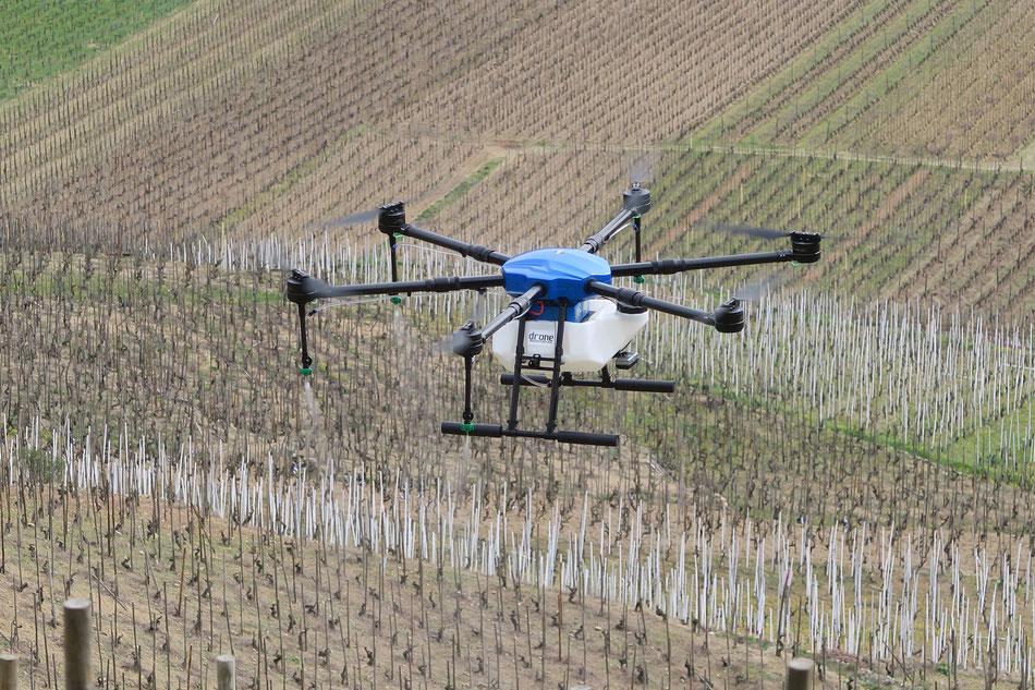 Drone viticulture